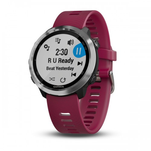 SmartWatch Garmin Forerunner 645 Music